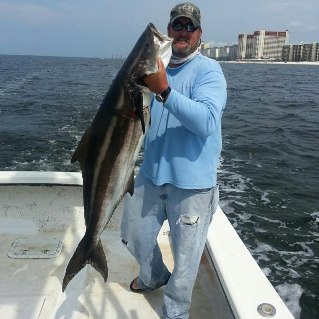 Captain Larry showing off a Cobia