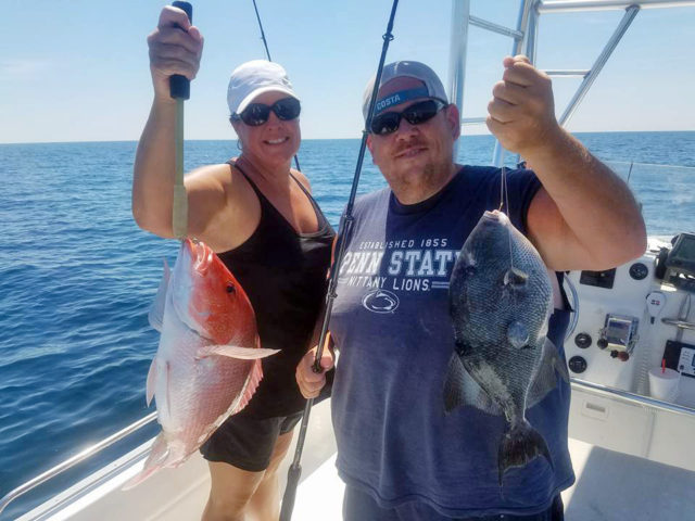 snapper-and-triggerfish